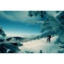 Fat bike ( snow bike )